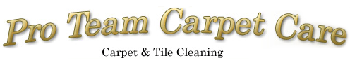 Pro Team Carpet Care, Logo